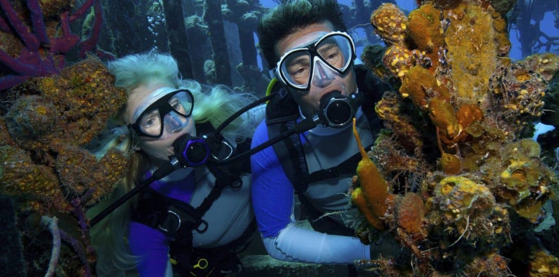 What Gear Do You Need to Scuba Dive? 2021
