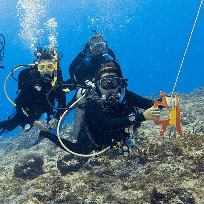 Drift Diver 2020