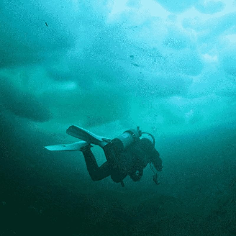 Ice Diver 2021
